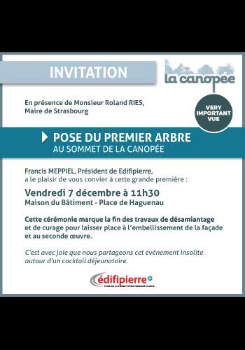 Les Ephémères by Edifipierre